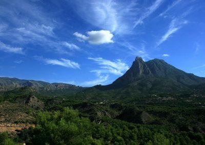 Campana View